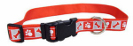 Dog Collar, Reflective, Adjustable, Red, 1 x 18-26-In.