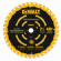 Single Precision Framing Saw Blade, 7.25-In., 40T