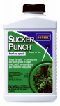 Sucker Punch Plant Growth Regulator, Ready-to-Use Brush Top, 8-oz.