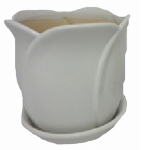 "8""Tulip Pot ASSTD, Must Purchase in Quantities of 6"