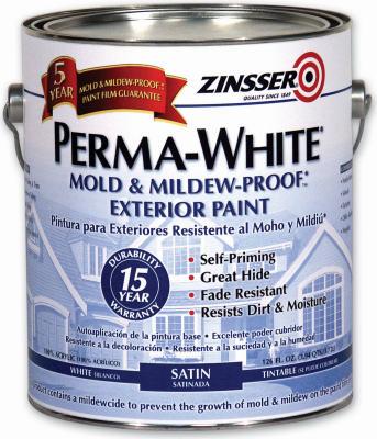 QT Sat Mildew EXT Paint