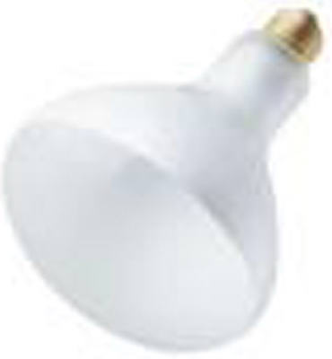 65W Spot Refl LGT Bulb - Woods Hardware
