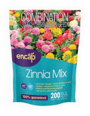 200SQFT Zinnia Mix