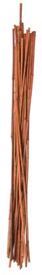 12PK 5 Bamboo Stake