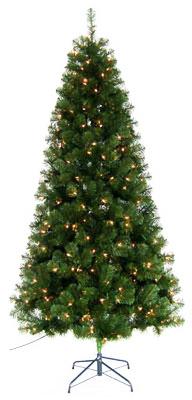 6.5 CLR Yardl Art Tree