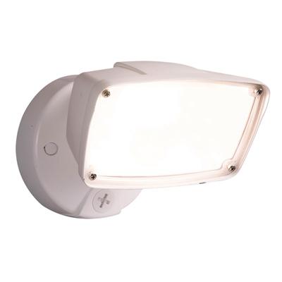 WHT LED FLD Secur Light