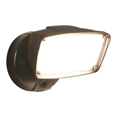 BRZ LED FLD Secur Light
