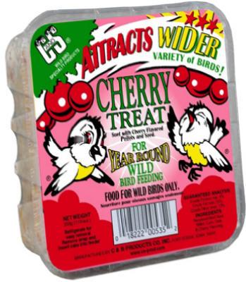 11.75 Cherry Suet Cake