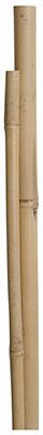 MG 4PK 5' Bamboo Pole - Woods Hardware