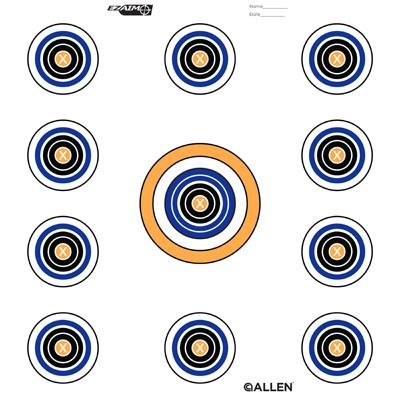 """12"""" 11 Spot Target"""