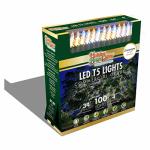 100LGT WW LED Set