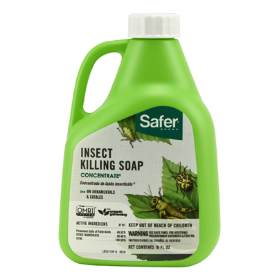16OZ Insect Soap
