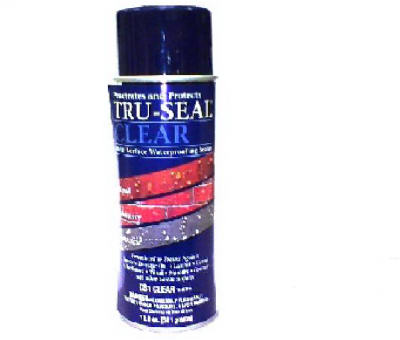 TS 12OZ Sealer Spray