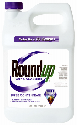GAL Super Conc Roundup