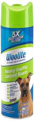 22OZ Woolite Cleaner - Woods Hardware