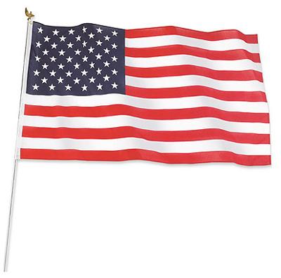 3x5 Poly US Flag Kit