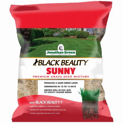 3LB Full Sun Grass Seed