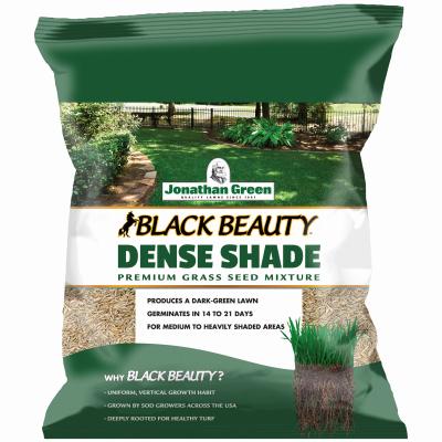 3LB Dense Shade Seed