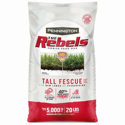 20LB Rebel Fescue Seed