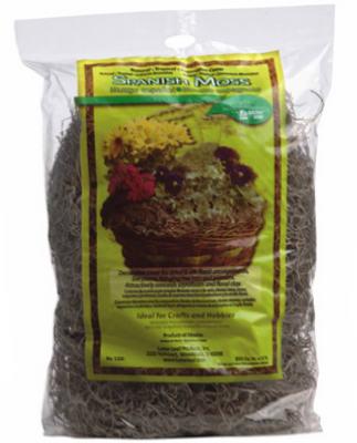 180CUIN Spanish Moss