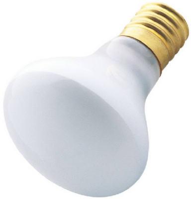 40W R14 FLD LGT Bulb
