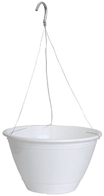 "10"" WHT Hang Basket"