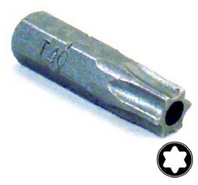 T40 Security Insert Bit