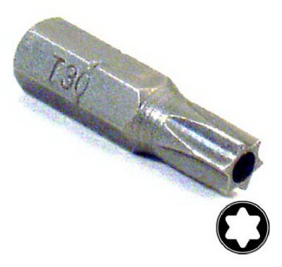 T30 Security Insert Bit
