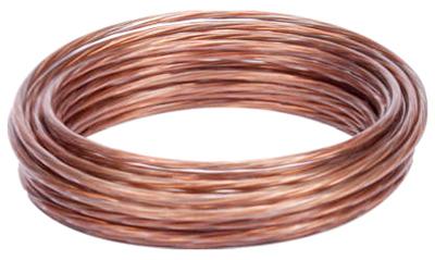 10%27 Plas Pict Wire