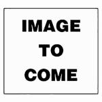 Plumb Pak 10404CK 1-1/2 x 1-1/2-Inch Chrome-Plated Hi Inlet J Bend