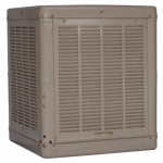 Champion Cooler 3000 DD 3000-CFM Cabinet Evaporative Cooler
