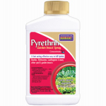 Bonide Products 857 Pyrethrin Garden Spray, 8-oz.