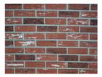 Zygrove Corp/Z-Brick Brands ZC004205 Used Inca Brick Facing, 20-Count