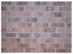 Zygrove Corp/Z-Brick Brands ZC018205 Wheat Americana Brick Facing, 20-Count