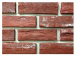 Z-Brick ZC025205 CTN 20 Sienna Brick Facing