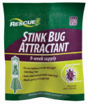 Sterling International SBTA-DB12 Stink Bug Trap Attractant