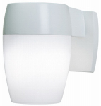 Cooper Lighting PFL23PCW-T24 Patio Light, Dusk-to-Dawn, Fluorescent, White, 23-Watt