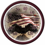 Taylor Precision Products 90007-215 13-Inch Bald Eagle Outdoor Thermometer