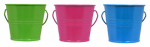 Lamplight Farms 1412114 Citronella Summer Fun Bucket, Assorted Colors, 4-oz.