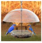 Woodlink NABBFDR Dome Top Seed & Bluebird Feeder, 11-3/4 Inch