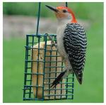 Woodlink NASUET1 Suet Cage Feeder