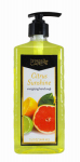 Delta Brands & Products 92250-1 Liquid Hand Soap, 15-oz, Citrus Fresh