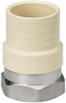Homewerks Worldwide 541-12-12-B Pipe Fittings, CPVC Transition Adapter, Stainless Steel, 1/2-In. FIP