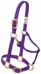 Weaver Leather 35-7035-PU Horse Halter With Snap, Adjustable, Hunter Green Nylon, 1-In., Small