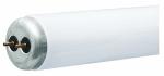 G E Lighting 68958 Fluorescent Light Bulb, Cool White, 40-Watt, 2-Pk.