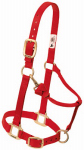 Weaver Leather 35-7034-RD Horse Halter, Snap, Red Nylon, 1-In., Small/Weanling Draft