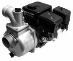 Pentair Water 1543A-65SP Liquid Transfer Pump, Aluminum, 259 GPM, 6.5-HP