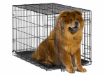 "Midwest Metal Products 1536 Dog Training Crate, Black, 36""L x 23""W x 25""H"