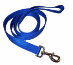 Coastal Pet Products 00906 B BLU06 Dog Leash, Blue Nylon, 1-In. x 6-Ft.