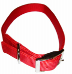 Coastal Pet Products 02901 B RED26 Dog Collar, 2-Ply, Red Nylon, 1 x 26-In.
